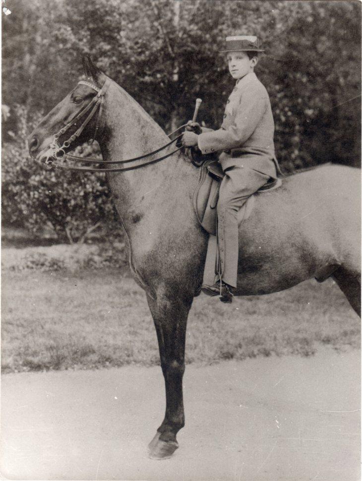 Alfonso XIII niño a caballo, retratado por Jose Demaría López, Campúa padre