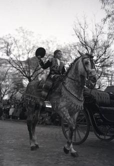 Un caballo engalanado para el desfile de San Antón, fotografiado por Campúa en 1953