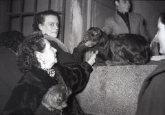 Los perros también eran llevados a bendecir ante San Antón, fotografiados por Campúa en 1955