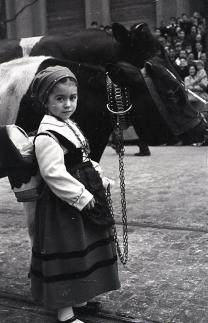 Una niña vestida de asturiana junto a una vaca lechera en el desfile de San Antón fotografiado por Campúa en 1955