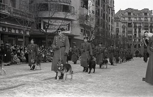 La guardia civil con sus perros en el desfile de San Antón fotografiado por Campúa en 1955