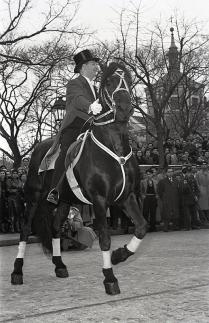 El jinete suizo Fredy Knie, entonces director del Circo Price, a lomos de un frisón negro, fotografiado por Campúa durante el desfile de 1955