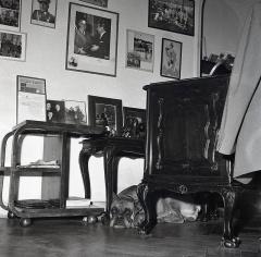 """Despacho de José Demaría Vázquez """"Campúa"""" en su estudio, con la perra Chati que le acompañaría durante muchos años"""