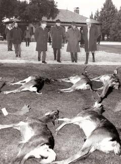 El ritual de exponer las piezas cazadas y revisarla era otro de los momentos clave de las cacerías