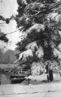 El estanque del parque de El Retiro nevado retratado por Campúa en enero de 1952