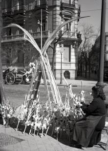 La víspera del domingo de ramos de 1953, el 28 de marzo, una vendedora de palmas es retratada por Pepe Campúa en las calles de Madrid